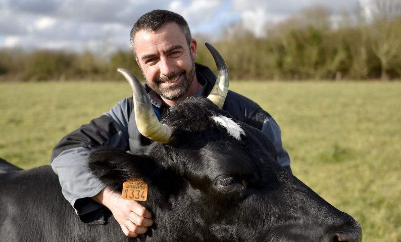 Fine Vache Laitière BIO